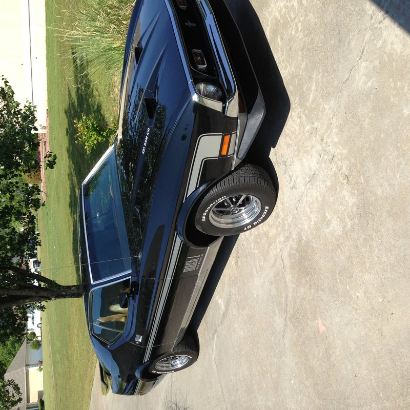 1971 ford mach1 mustang for sale in calhoun georgia old car online. Black Bedroom Furniture Sets. Home Design Ideas