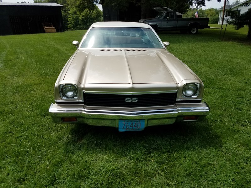 1973 Chevrolet Chevelle ss For Sale in Summer Shade, Kentucky | Old ...