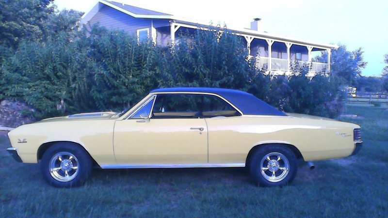 Auto Insurance Florida >> 1967 Chevrolet chevelle For Sale in Brooksville, Florida | Old Car Online