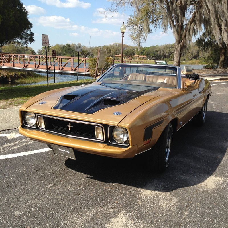 1973 Ford Mustang For Sale in Bartow, Florida | Old Car Online
